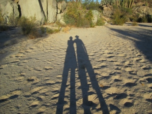 Shadows Catavina