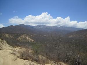 Sierra de la Laguna, Baja California Sur