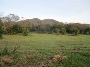 Fields around Rancho Primavera