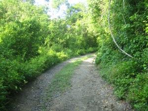 Trails at Chamela