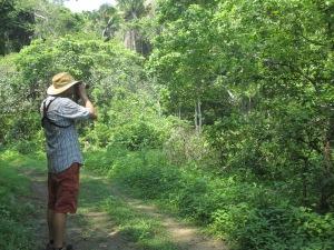 Josh Bird the Aguacatal-Las Calabazas Trail in San Pancho