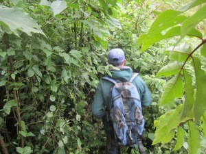 Guadalupe, our trail guide in Zapotal, clearing a bit of overgrown trail.