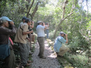 The gang birding at Sumidero Canyon