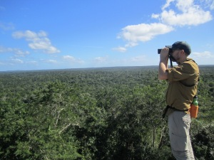 Josh scanning the skies for raptors on top of Temple 1 Calakmul
