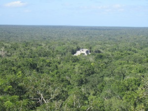 View of distant ruins from the top of Temple 1 at Calakmul