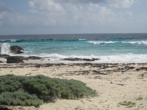 The shores of Cozumel Island