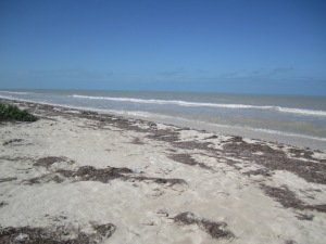 Lunch time on the beach near Puerto Progresso