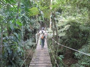 Birding at Reserva el Jaguar, Nicaragua