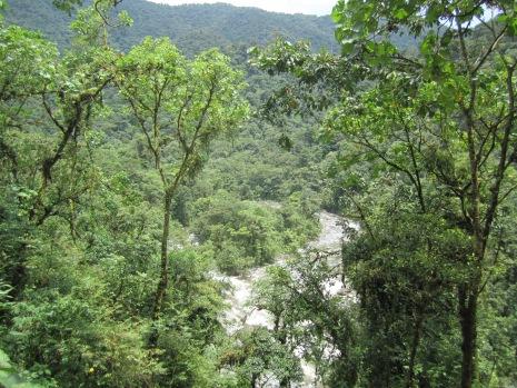 Orosi River in Tapanti National Park, Costa Rica