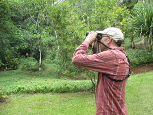 Josh scanning for the Turquoise Cotinga at Los Cosingos