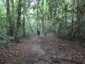 Along the trails in Darién National Park