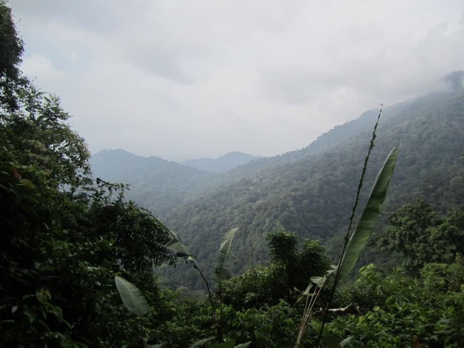 Darién National Park
