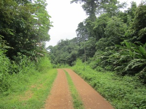 El Salto Road