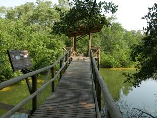 The board walk at Isla de Salamanca