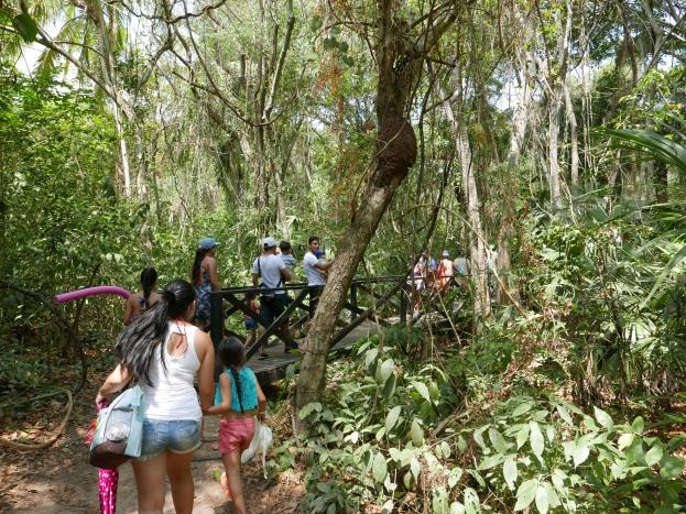 The crowds at Tayrona National Park