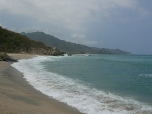The trails at Tayrona National Park, the first accessible beach near EcoHabs