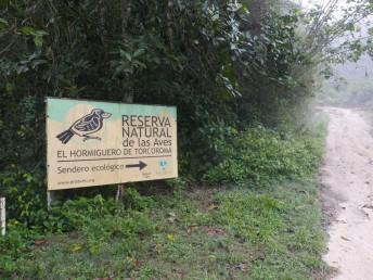 Recurve-billed Bushbird Reserve