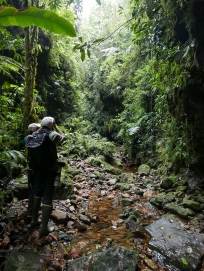Birding Cachalú
