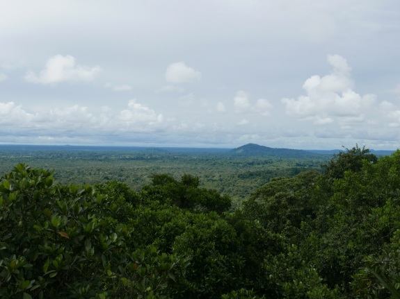 View from Cerro Guacamaya in Mitú Cachivera