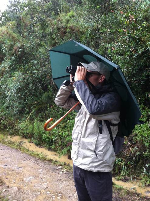 Josh birding in the rain