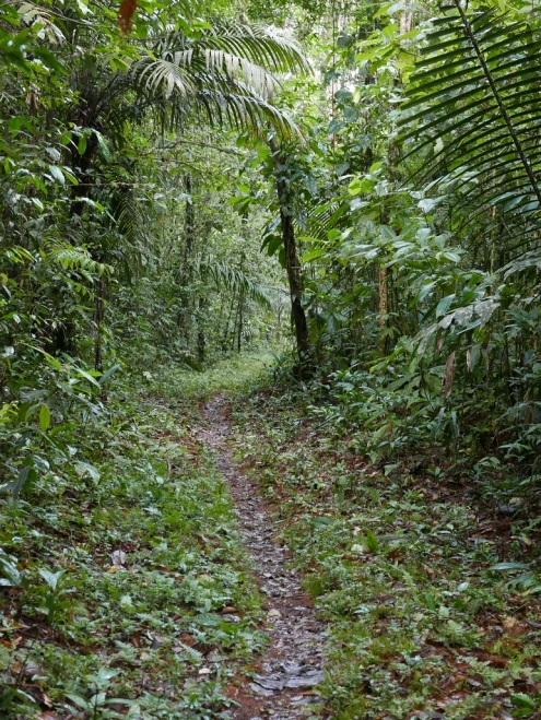 Trails at Pueblo Nuevo