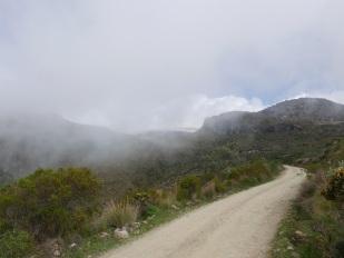 Paramo del Ruiz/Los Nevados