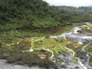 Termales de San Juan, Puracé National Park