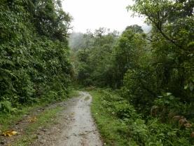 The Portachuelo - Minchoy trail
