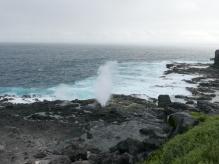 Blow hole on Punta Suarez, Espanola