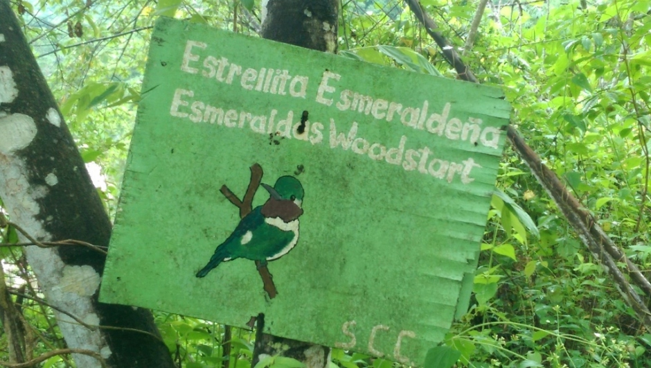 Esmeraldas Woodstar sign