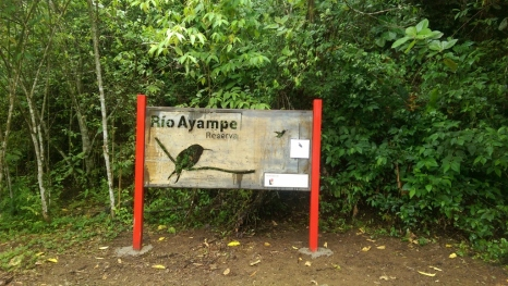 Jocotoco Foundation's Rio Ayampe Reserve