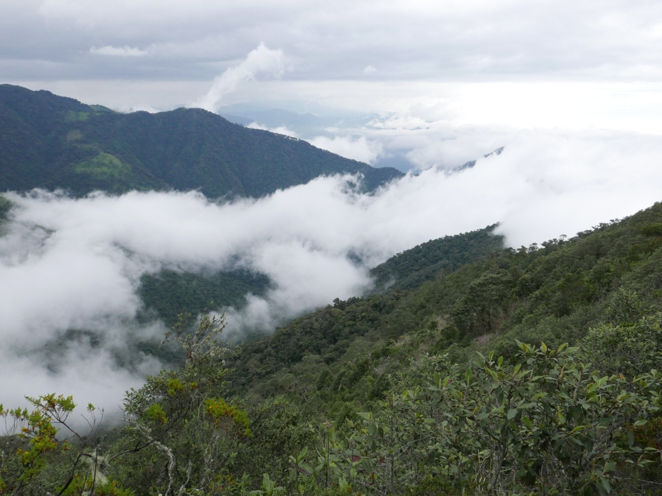 view from inca trail (4) - Copy